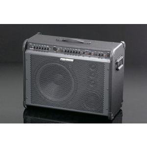 FISHMAN - Loudbox Pro - 600 Watt - (pro-lbx-ex2) combo per chitarra acustica