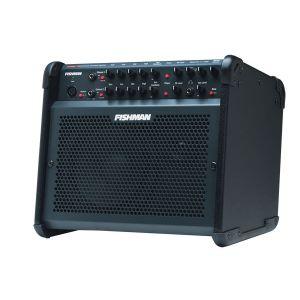 FISHMAN - Loudbox 100 Acoustic Amplifier combo per chitarra acustica